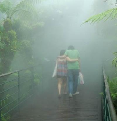 Ботанический сад и парк Орхидей