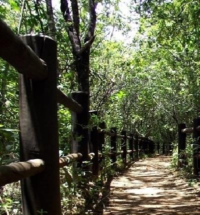 Национальный парк Бразилиа