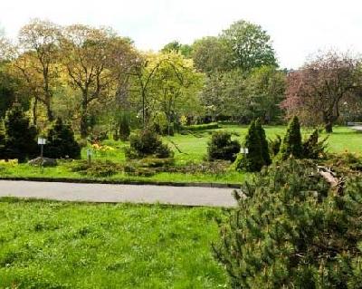 Ботанический сад Калининград