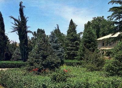 Ботанический сад Академии наук Таджикистана