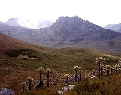 Национальный парк Чингаза