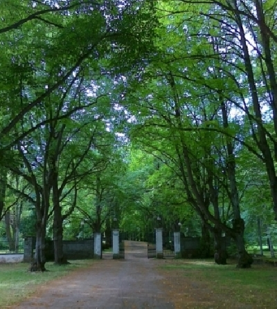 Парк Тойла-Ору