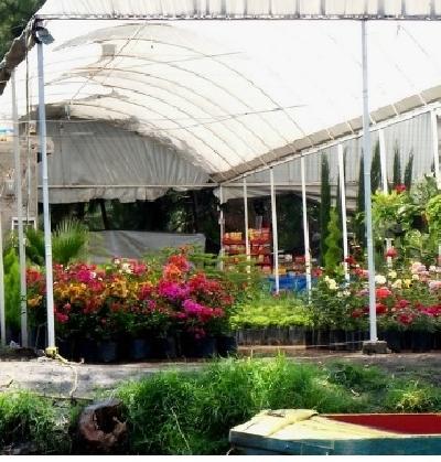 Район Сочимилько