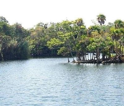Эко-парк Танка