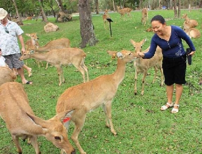 Открытый зоопарк Кха Кео