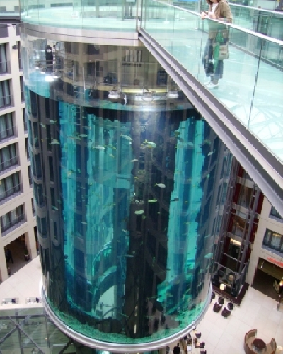 Аквариум AquaDom