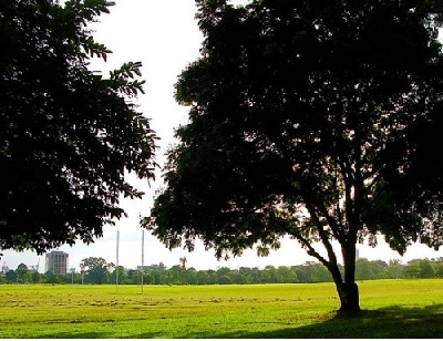 Квин Саванна Парк