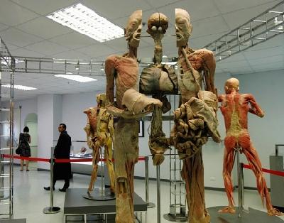 Музей медицины Сирирач