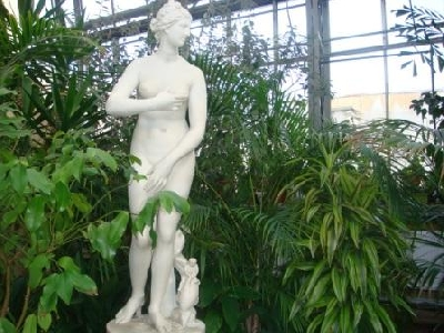 Оранжерея Таврического сада, Выставочный зал
