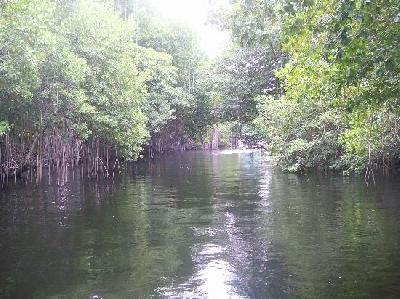 Национальный парк Блэк-Ривер
