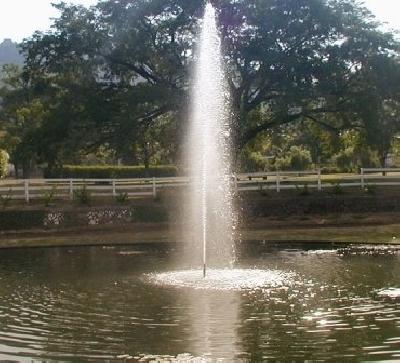 Королевский ботанический сад Кэслтон