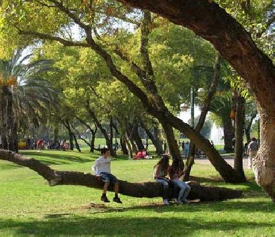 Парк Яркон